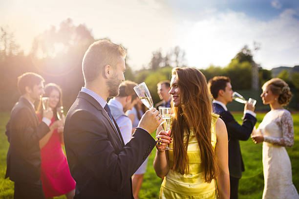 wedding guests clinking glasses - guest stock pictures, royalty-free photos & images