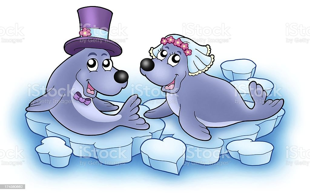 Wedding image with cute seals stock photo