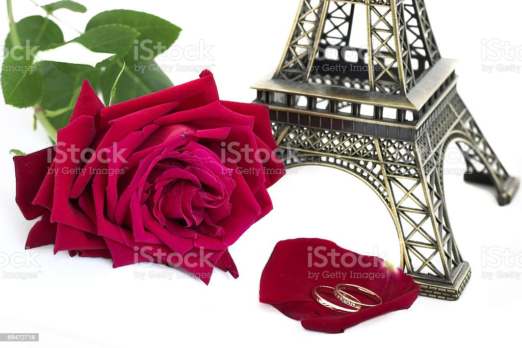 wedding in Paris royalty free stockfoto