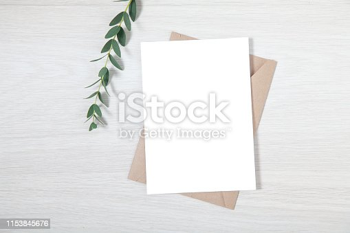 Wedding Invitation Mockup, Blank Party Invitation Card with a Sprig of Eucalyptus