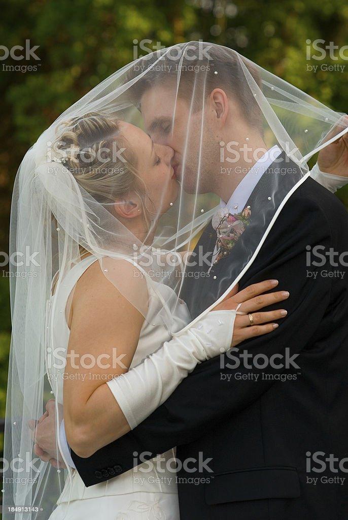 wedding: kissing under the veil royalty-free stock photo