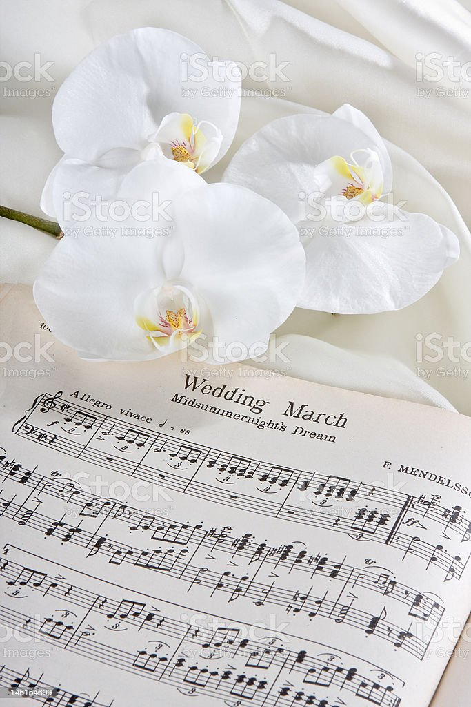 Wedding march and orchids stock photo