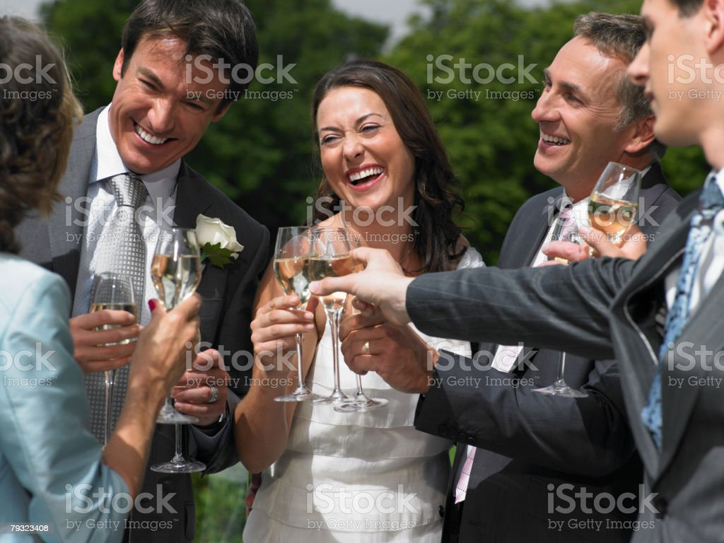 Wedding party toasting  royalty-free 스톡 사진