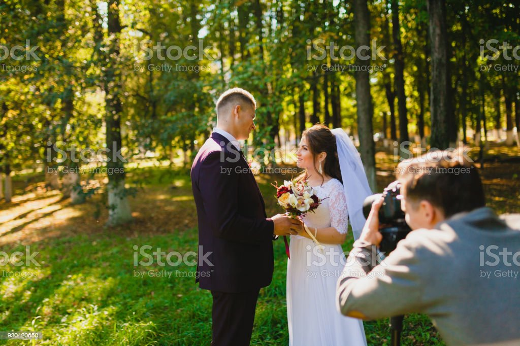 Wedding photoshoot in the summer park stock photo
