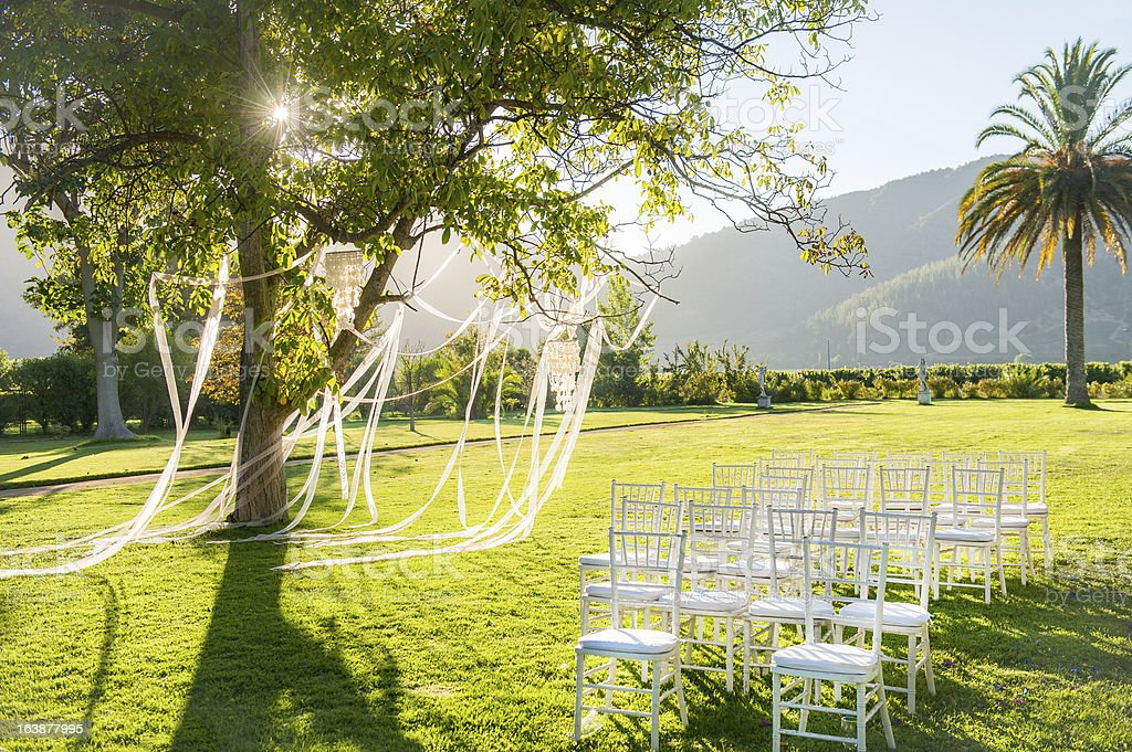 Wedding reception in a beautiful park royalty-free stock photo