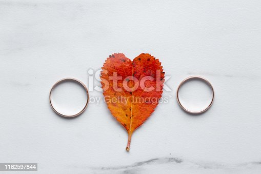 istock wedding rings and a red heart-shaped leaf on a marble background. Wedding concept or concept of Valentine's Day and all lovers 1182597844