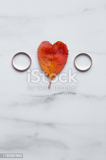 istock wedding rings and a red heart-shaped leaf on a marble background. Wedding concept or concept of Valentine's Day and all lovers 1182597853