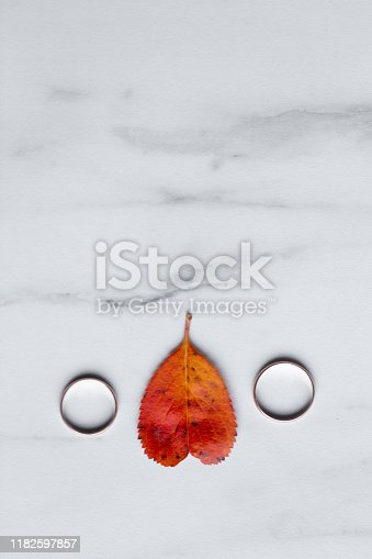 istock wedding rings and a red heart-shaped leaf on a marble background. Wedding concept or concept of Valentine's Day and all lovers 1182597857