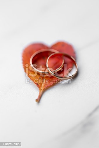 istock wedding rings and a red heart-shaped leaf on a marble background. Wedding concept or concept of Valentine's Day and all lovers 1182597929