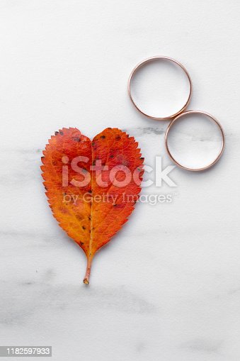 istock wedding rings and a red heart-shaped leaf on a marble background. Wedding concept or concept of Valentine's Day and all lovers 1182597933