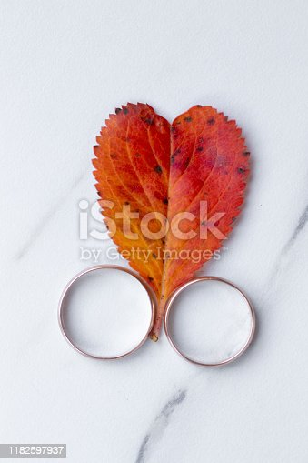 istock wedding rings and a red heart-shaped leaf on a marble background. Wedding concept or concept of Valentine's Day and all lovers 1182597937