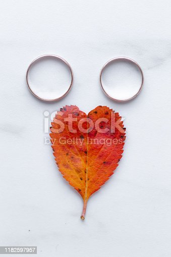 istock wedding rings and a red heart-shaped leaf on a marble background. Wedding concept or concept of Valentine's Day and all lovers 1182597957