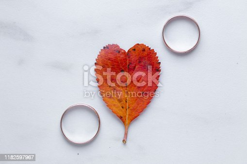 istock wedding rings and a red heart-shaped leaf on a marble background. Wedding concept or concept of Valentine's Day and all lovers 1182597967