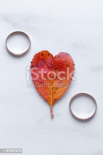 istock wedding rings and a red heart-shaped leaf on a marble background. Wedding concept or concept of Valentine's Day and all lovers 1182597979