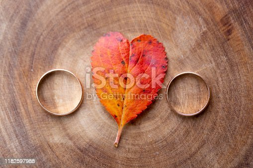 istock wedding rings and a red heart-shaped leaf on a marble background. Wedding concept or concept of Valentine's Day and all lovers 1182597988