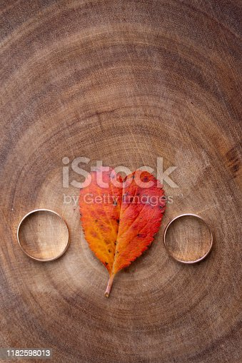 istock wedding rings and a red heart-shaped leaf on a marble background. Wedding concept or concept of Valentine's Day and all lovers 1182598013