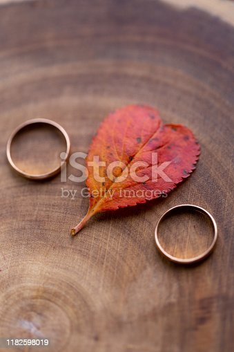 istock wedding rings and a red heart-shaped leaf on a marble background. Wedding concept or concept of Valentine's Day and all lovers 1182598019