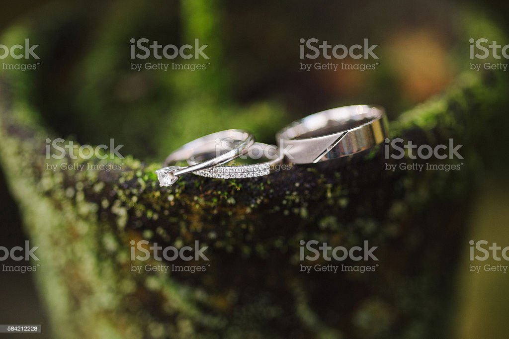 Wedding rings and engagement ring on vintage flower pot stock photo