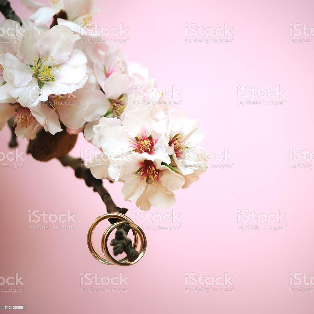 Hochzeit Ringe Nahaufnahme Mit Rosa Mandel Blumen Stock Fotografie