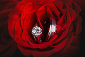Wedding rings in red roses