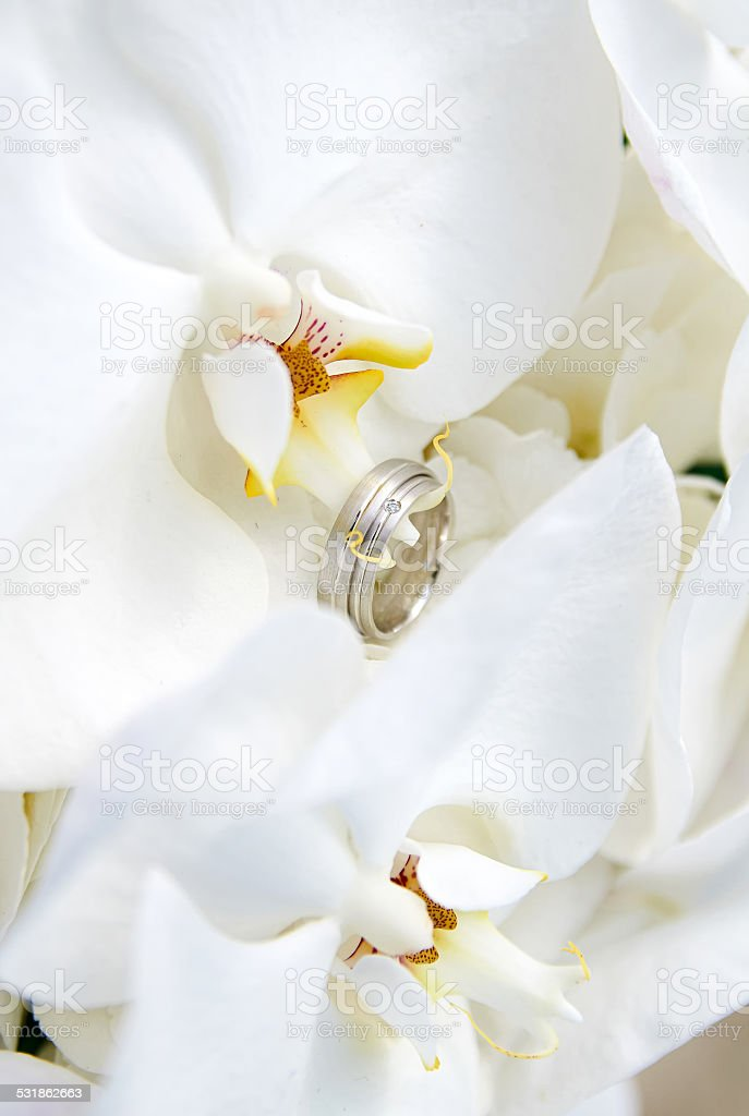 Wedding Rings in white orchid stock photo