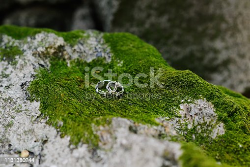 wedding rings of white gold on a stone on a background of green moss