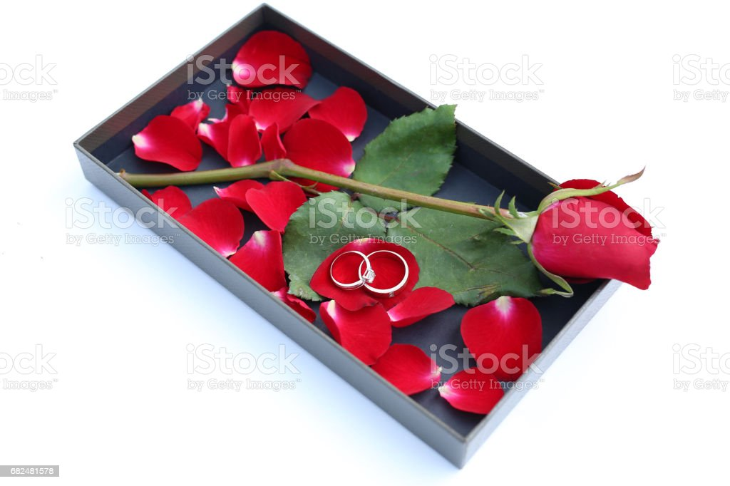 Wedding rings on petals of red rose in luxury leather box. foto stock royalty-free