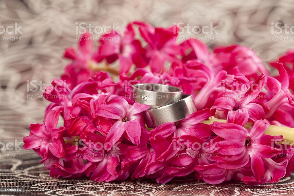Wedding rings on red hyacinth royalty-free stock photo
