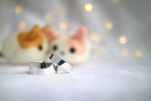 155315629 istock photo Wedding rings with cute pet doll lovers 1259738584