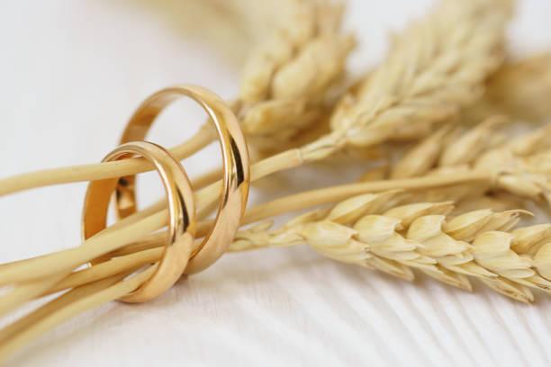 Eheringe mit Weizenohren auf weißem Holz. – Foto