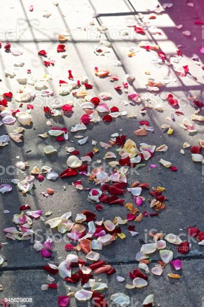 Wedding rose petal confetti picture id945629608?b=1&k=6&m=945629608&s=612x612&h=igujma53fd7gviwjudbzseg1dgrncteoexnq2ft8vgq=