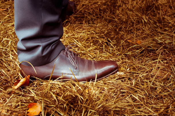 Wedding shoes stock photo