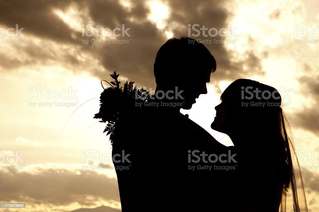 Wedding Silhouette royalty-free stock photo
