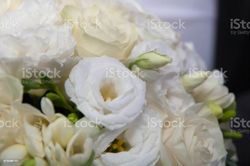 wedding sobry bride Bridal bouquet stock photo