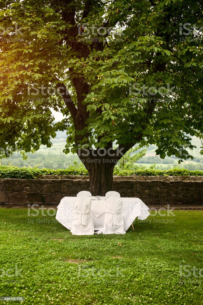 Wedding table outdoors stock photo