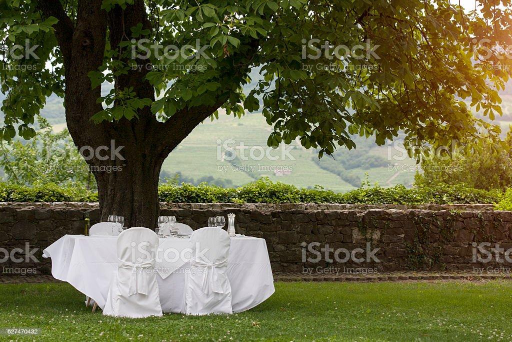 Wedding table set in the garden stock photo