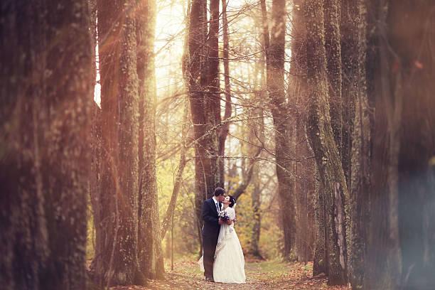 Boda caminando en un bosque mágico - foto de stock