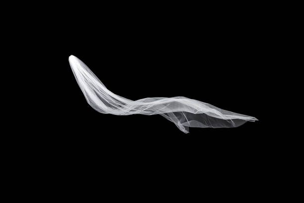 wedding white bridal veil isolated on black background. veil flutters in the wind - veil stock pictures, royalty-free photos & images