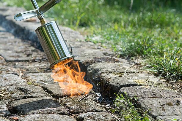 weed control with fire - wieden stockfoto's en -beelden