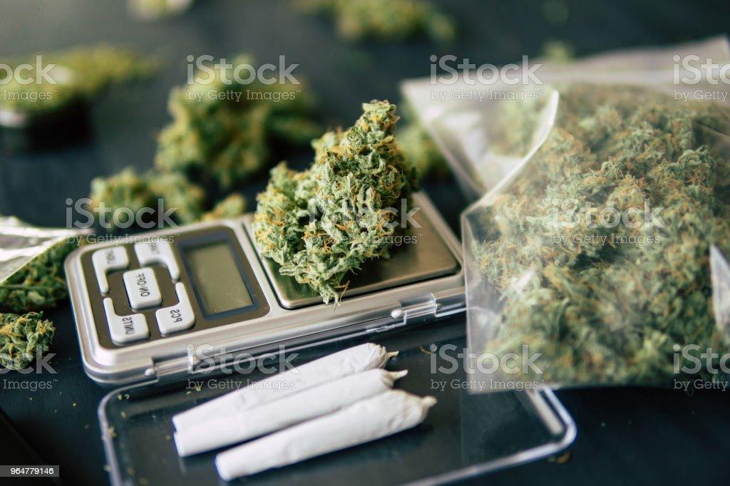 weed lie on a dark background, Flowers bud of cannabis marijuana royalty-free stock photo