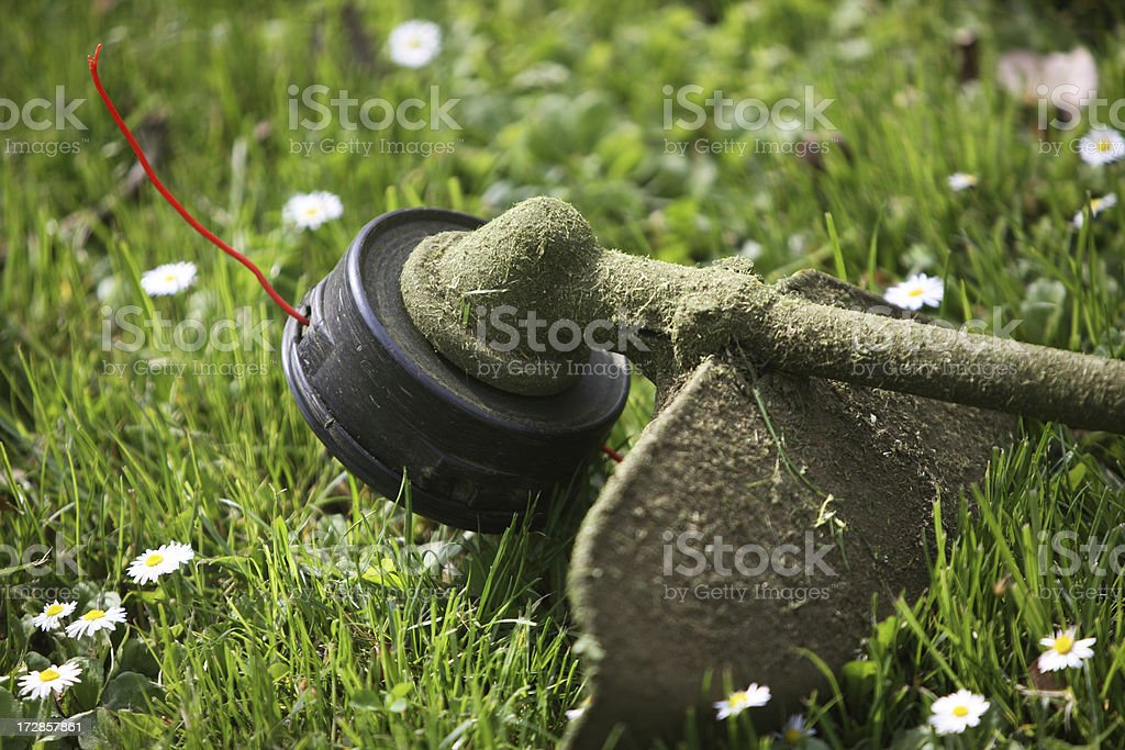 Weed Trimmer XXL stock photo
