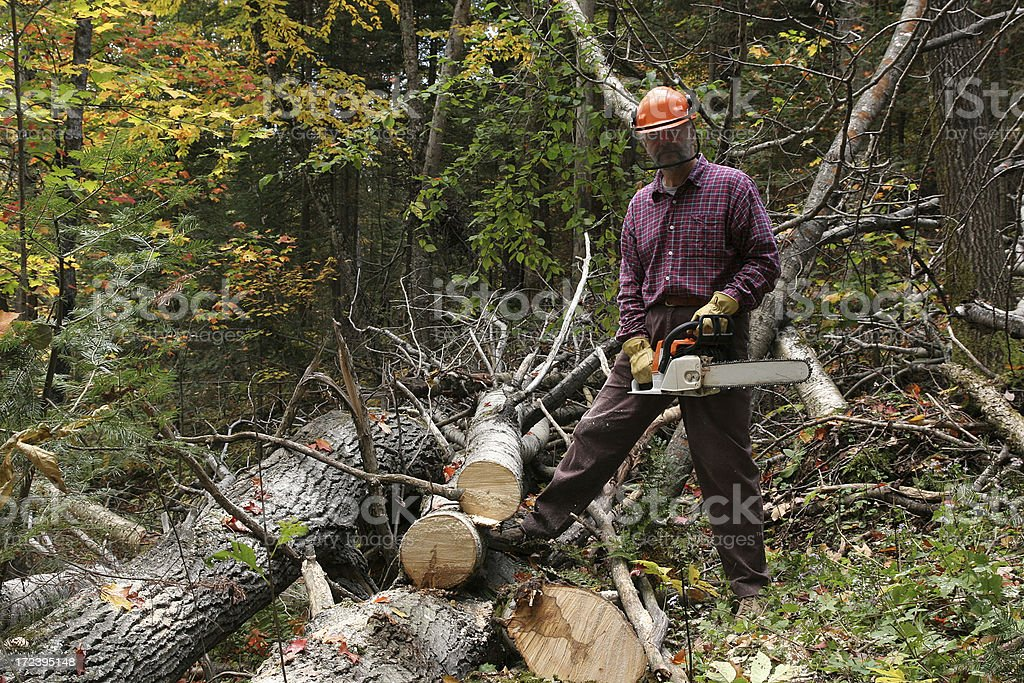 Weekend logger royalty-free stock photo
