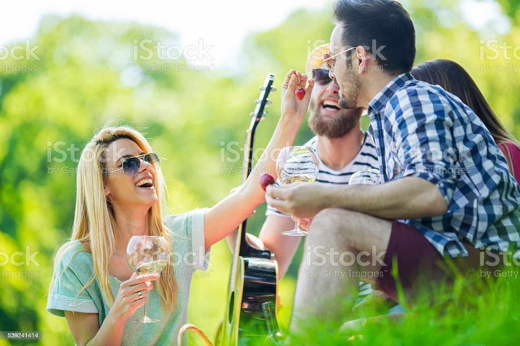 Weekend picnic royalty-free stock photo