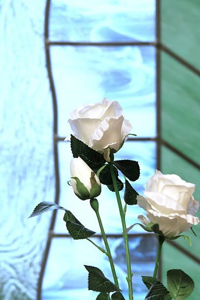White Rosten – Foto