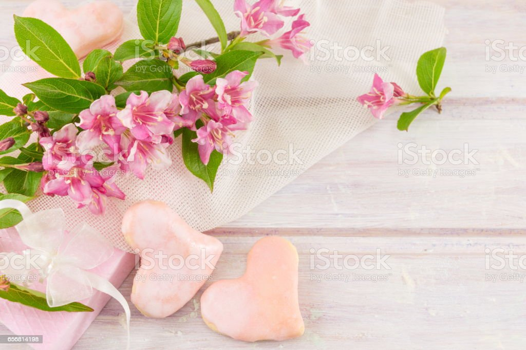 Weigela pink flowers in blossom stock photo