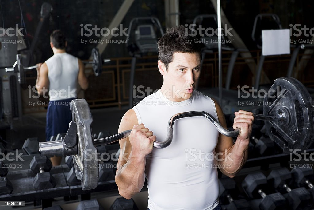 Weight Lifting at the Gym - Curls royalty-free stock photo