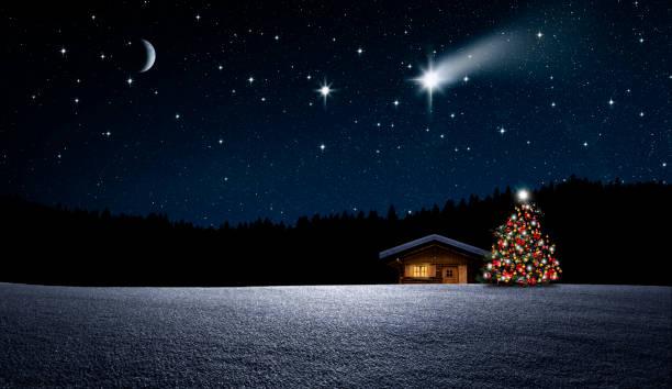 Weihnachten Weihnachtbaum im Nächtlichen Winterwald star field stock pictures, royalty-free photos & images