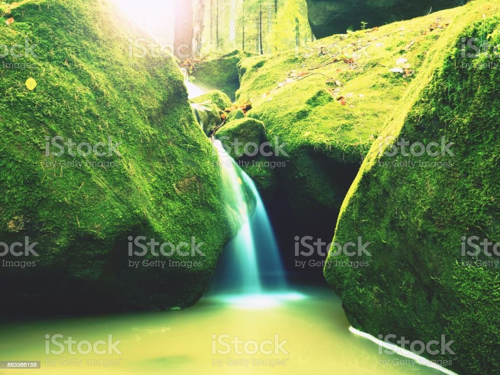 Weir in mountain stream. Colorful leaves  on stones into water. Mossy boulders. stock photo