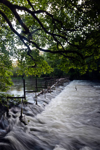 Weir on Cong River, County Mayo, Ireland stock photo