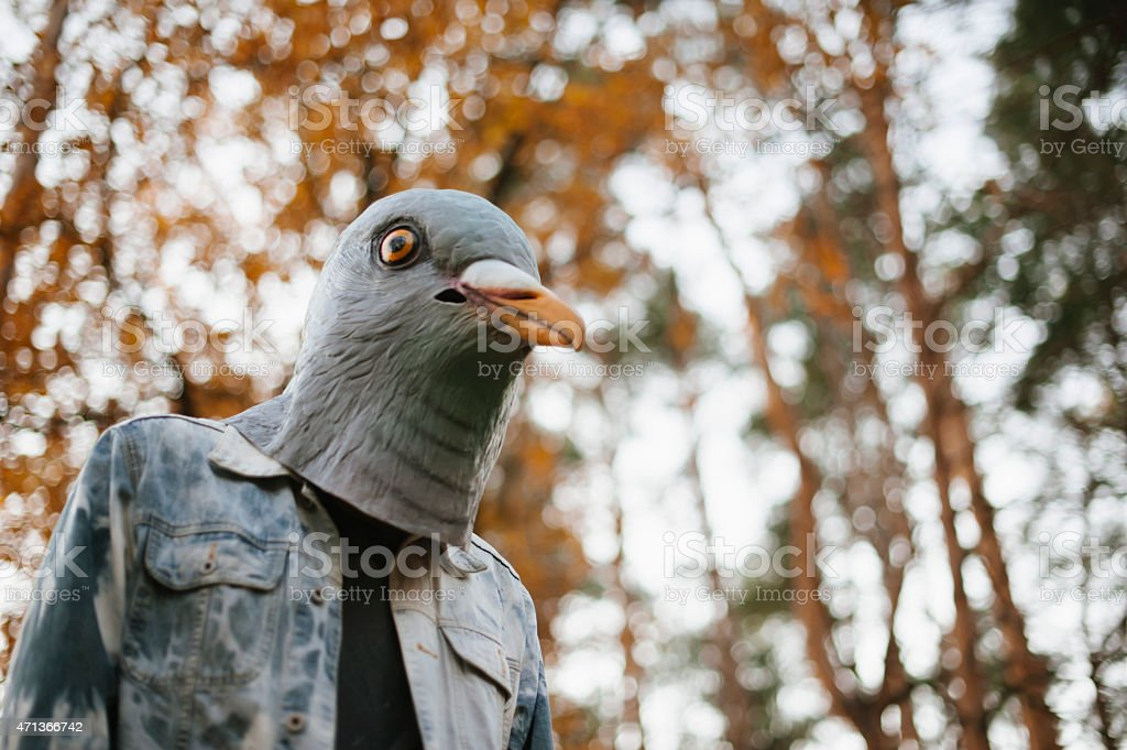 Weird man in a creepy pigeon bird mask stock photo